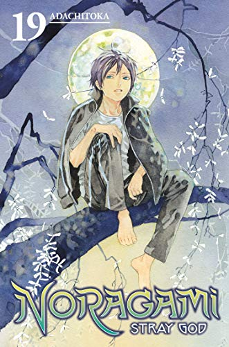 Noragami: Stray God, Volume 19: Trial by Pledge cover