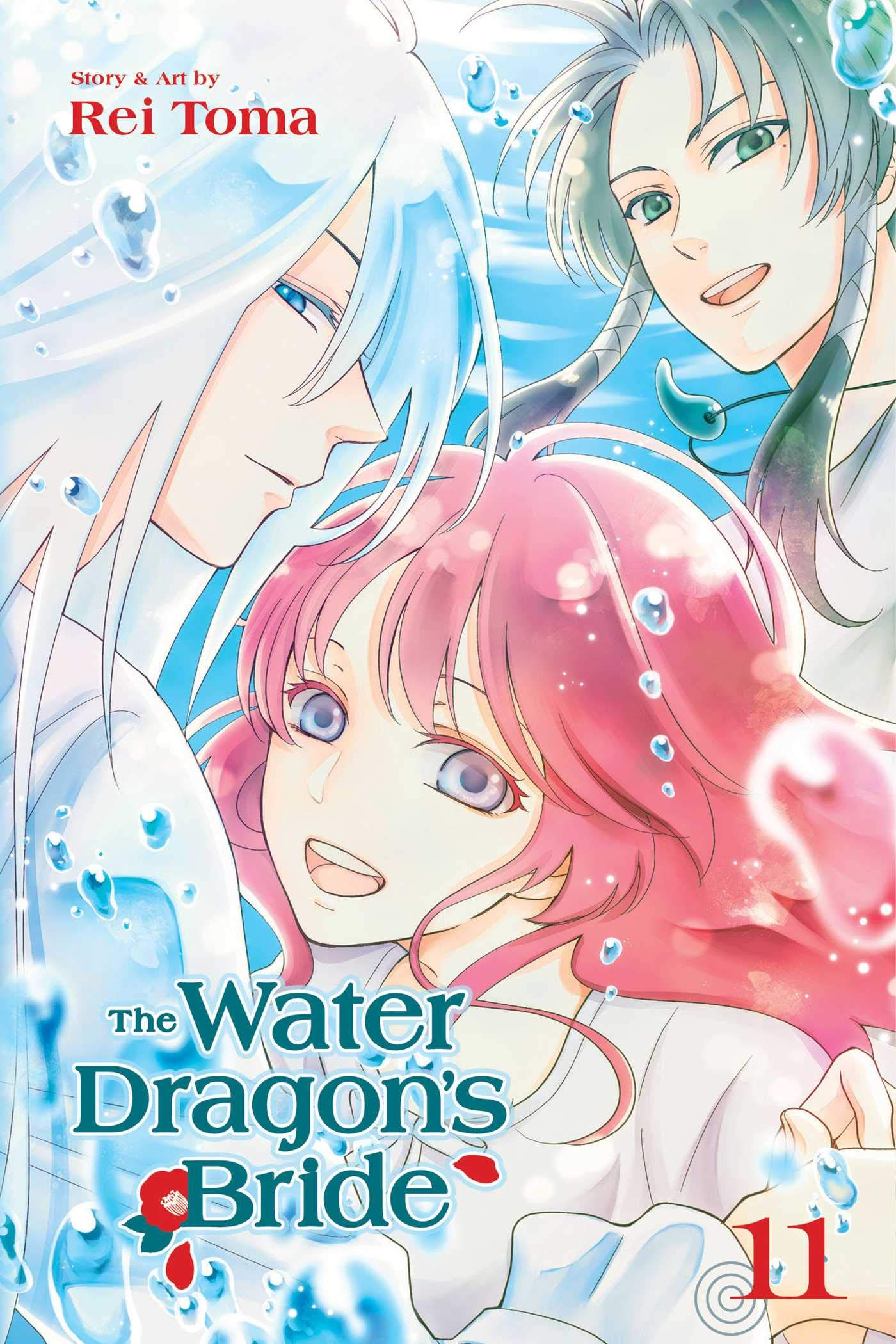 The Water Dragon's Bride, Volume 11 cover